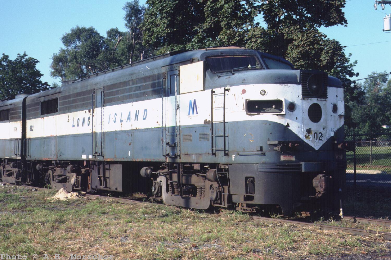 Morscher U0026 39 S 1989
